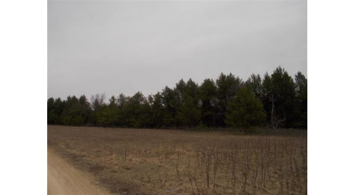 L9 County Road Hh Lyndon, WI 53944 by Castle Rock Realty $24,900