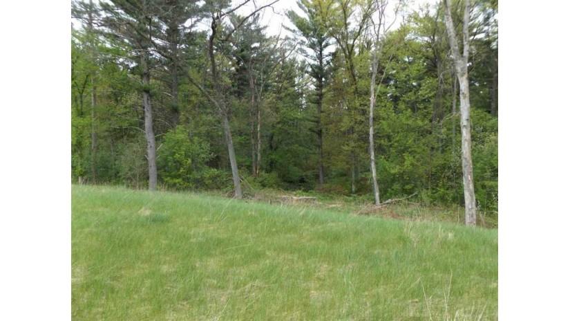 Lot 20 Deerwood Glen Wisconsin Dells, WI 53965 by Wisconsin Dells Realty $29,900