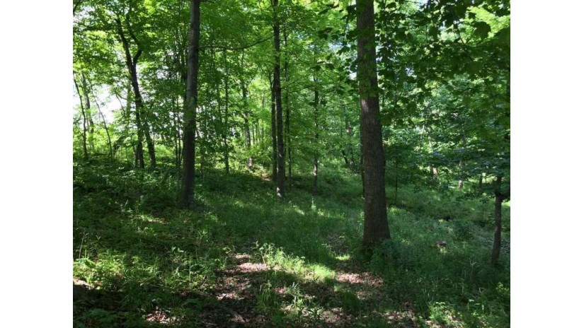78.58 Acres Confidential Scott, WI 53805 by First Weber Inc $214,900