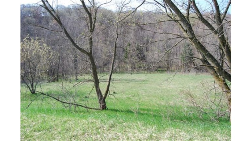 L61 Staghorn Ct Woodland, WI 53941 by Re/Max Preferred $9,500