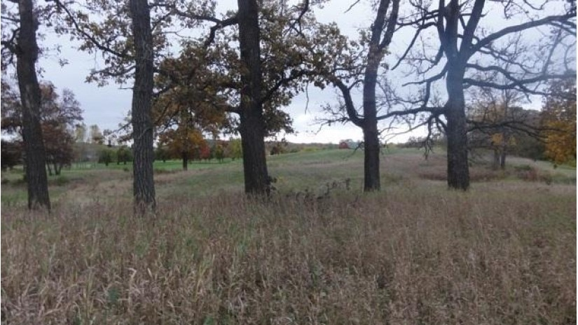 4226 Vilas Rd Cottage Grove, WI 53527-9546 by Re/Max Community Realty $1,755,000