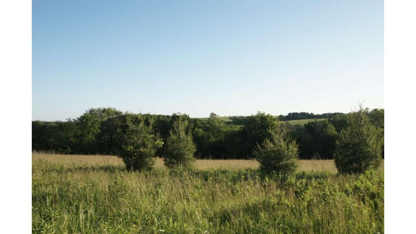 4.53 Ac County Road Qq Mineral Point, WI 53565 by Potterton-Rule Inc $55,000