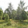 80 Ac 16th Ave & 19th St Necedah, WI 54646