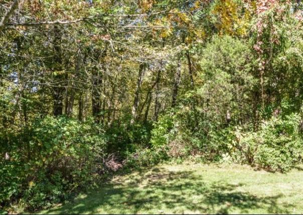 7615 Timber Ridge, Dexter, MI, 48130