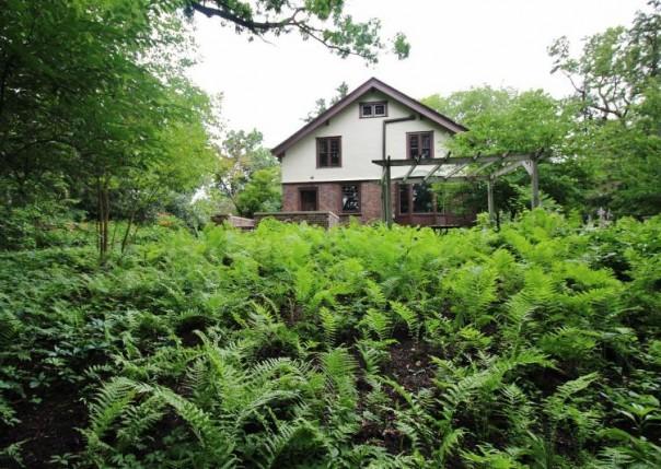 1020 Ferdon, Ann Arbor, MI, 48104