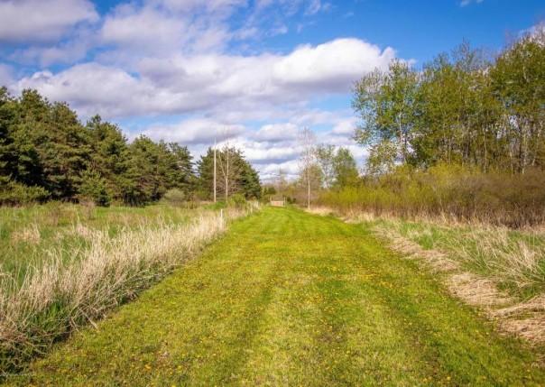 1227 E Dexter Trail, Dansville, MI, 48819