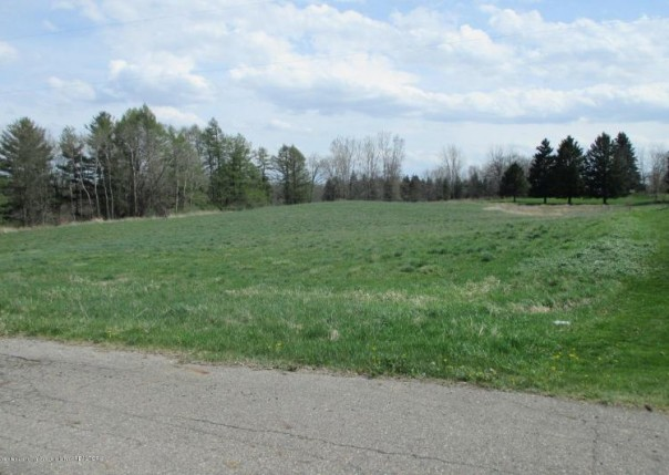 0 Horn Lane, Parcel C Charlotte, MI 48813 by Emerald Realty & Development $26,250