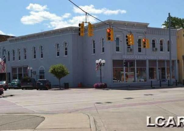 101 W ADRIAN ST. Blissfield, MI 49228 by Howard Hanna Real Estate Services-Tecumseh $280,000