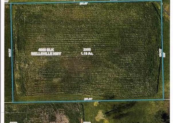 4000 S Wellsville Palmyra, MI 49268 by Howard Hanna Real Estate Services-Tecumseh $22,000
