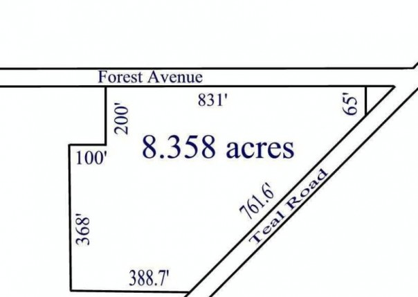 8 TEAL RD Petersburg, MI 49270 by Real Estate Solutions/Mi, Llc $289,900