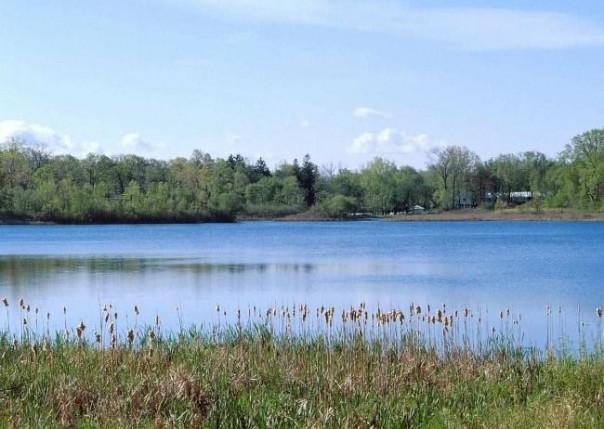2633  Turtle Lake Dr,  Bloomfield Hills, MI