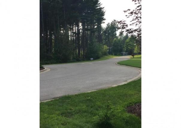 81 Mystic Pines Ct, Pinckney, MI, 48169