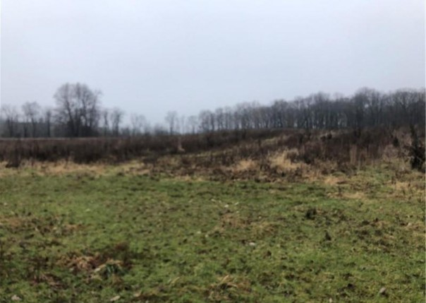 Parcel 5 Elevation, Howell, MI, 48855