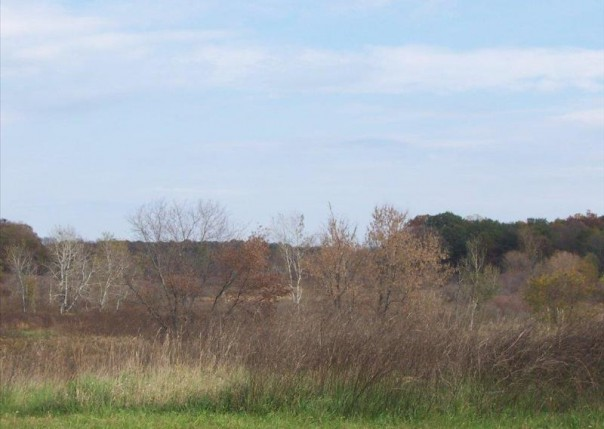 U 14 Iosco Ridge,  Gregory, MI 48137 by Kline Real Estate, Inc $19,900