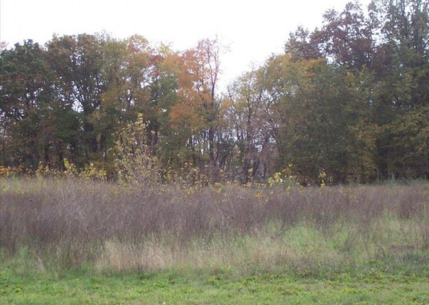 Unit10 Iosco Ridge,  Gregory, MI 48137 by Kline Real Estate, Inc $19,900