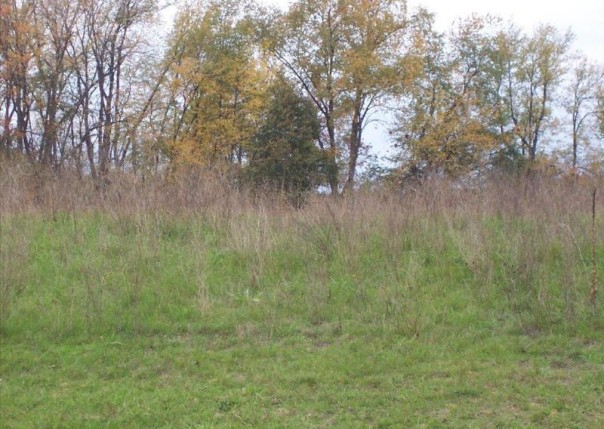 Unit49 Iosco Ridge,  Gregory, MI 48137 by Kline Real Estate, Inc $19,900