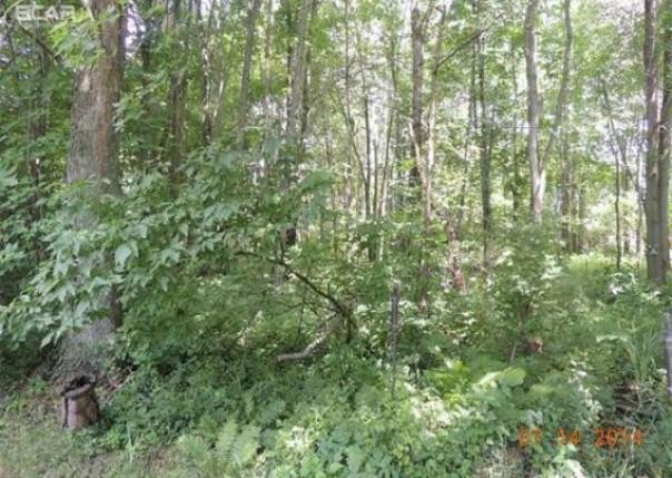 0  Pine Grove Cir,  Millington, MI 48746 by J. Mcleod Realty, Inc. $19,950