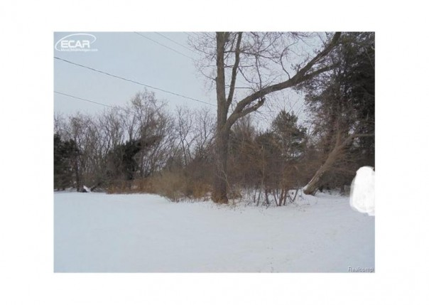 0 Grand Blanc Road Swartz Creek, MI 48473 by Remax Platinum $16,900