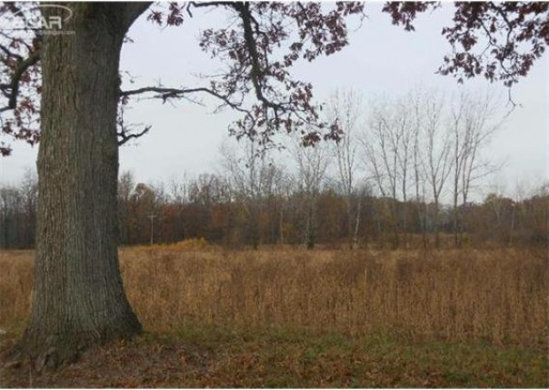 0 McPherson Road Millington Township, MI 48746 by Area Wide Real Estate $12,900