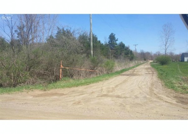 0 Reese Rd. Millington Township, MI 48746 by Changingstreets.com $25,000