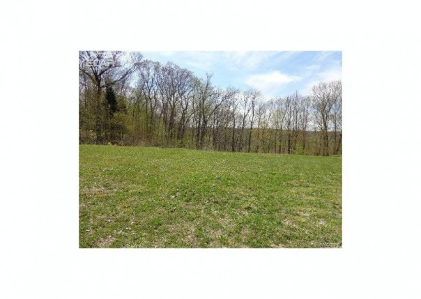 0 S McKinley Road Montrose, MI 48457 by Independent Realty Inc. $39,900