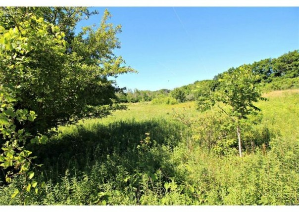 0 W River Rd,  Flushing, MI 48433 by Lucy Ham Group Inc $69,900