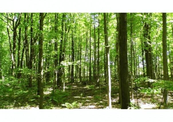 0 Arbela Road Millington Township, MI 48746 by J. Mcleod Realty, Inc. $244,900