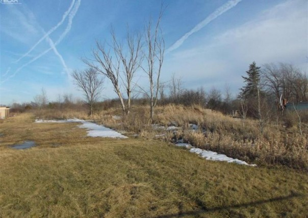 0 S Elms Rd,  Swartz Creek, MI 48473 by Real Living Tremaine Real Estate.com $45,000