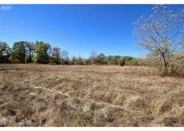 13508  Meadowood Ln,  Gaines, MI 48436 by Real Living Tremaine Real Estate.com $34,000
