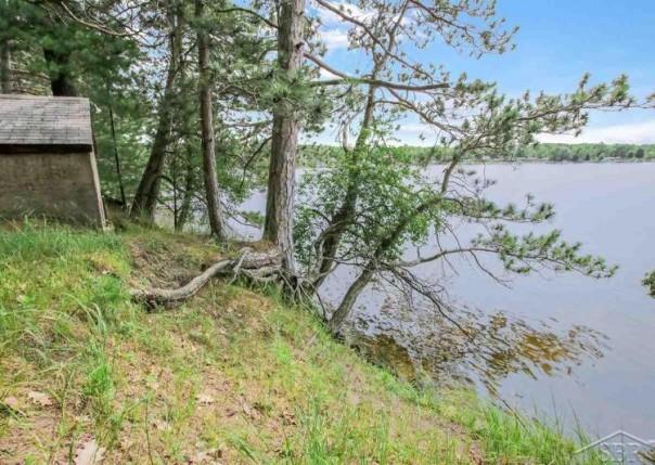 394 Happys Island, Hale, MI, 48739