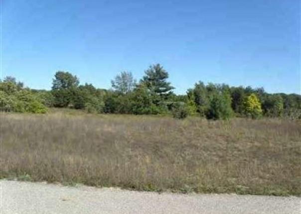 Trim Lake View Estates,  New Era, MI 49446 by Wickstra Realty, Inc. $13,900