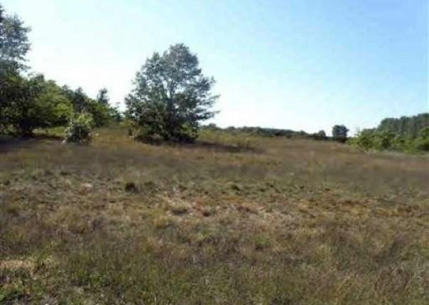14 Trim Lake View Estates,  New Era, MI 49446 by Wickstra Realty, Inc. $13,900