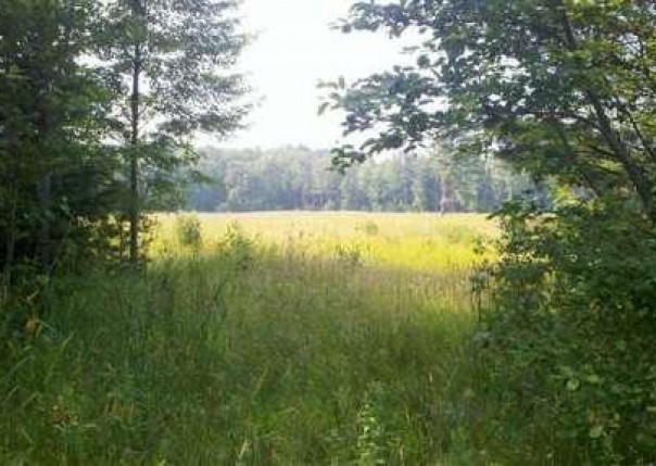 1 Hammett,  Pentwater, MI 49449 by Wickstra Realty, Inc. $69,900