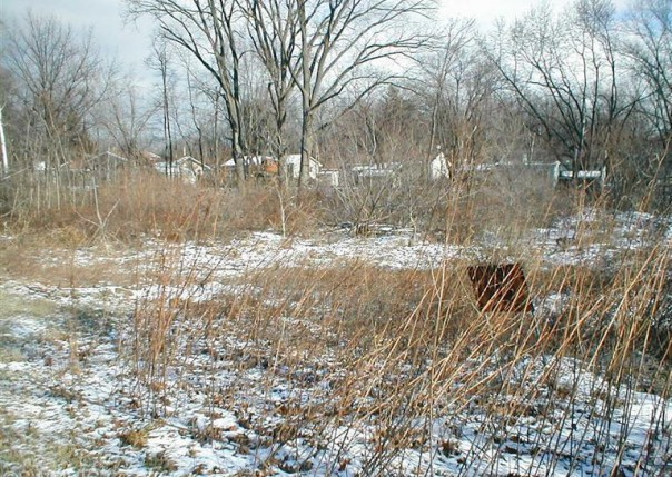 Red Arrow,  Stevensville, MI 49127 by Core Real Estate, Inc. $41,900