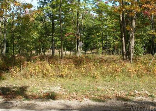 12004 Buchanan Road 42-43,  Canadian Lakes, MI 49346 by Century 21 White House Realty $13,900