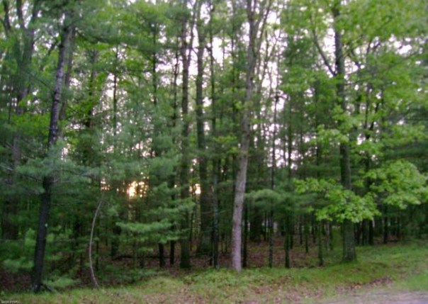Meadow Wood,  Manistee, MI 49660 by Coldwell Banker Alm Ludington $38,500