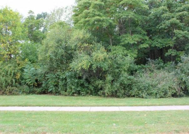 1554 Carolyn, Benton Harbor, MI, 49022