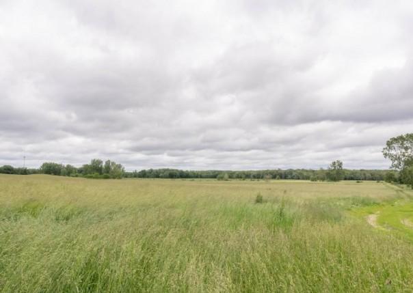 19544 26 Mile, Albion, MI, 49224