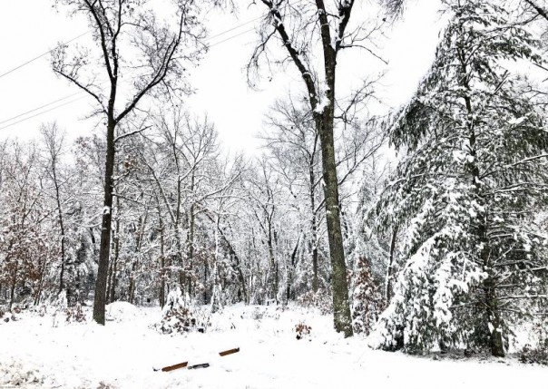 11614 Red Cedar, Baldwin, MI, 49304