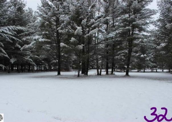2233 Fox Run Road, West Branch, MI, 48661