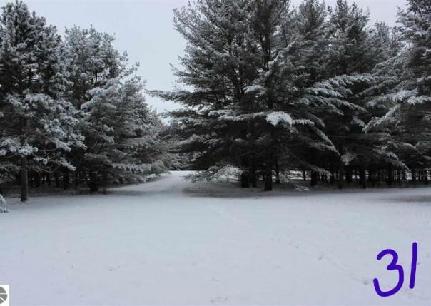 2249 Fox Run Road, West Branch, MI, 48661