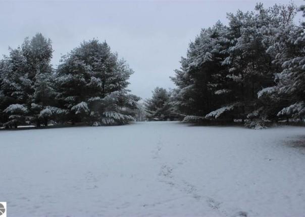 2269 Fox Run Road, West Branch, MI, 48661