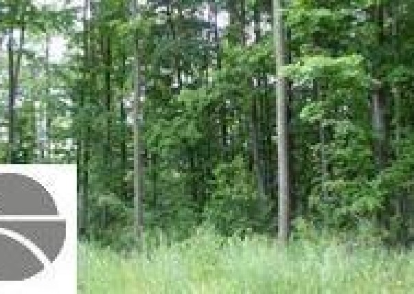 2111 Kodiak Trail,  Kingsley, MI 49649 by Real Estate One $19,900