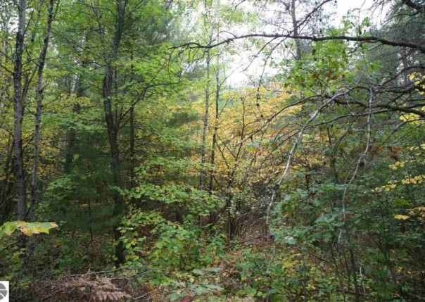 58 LOT S 43 1/2 Road, Cadillac, MI, 49601