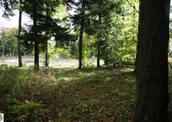 10 lot Scenic Woods Circle, Cadillac, MI, 49601