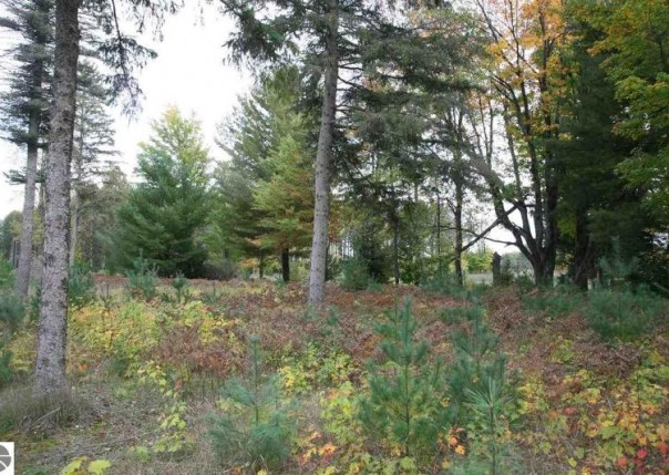 21 lot Scenic Woods Circle, Cadillac, MI, 49601