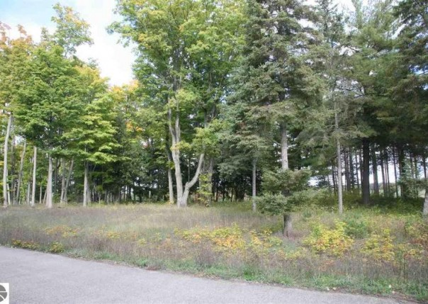 1-26 LOT Scenic Woods Circle, Cadillac, MI, 49601