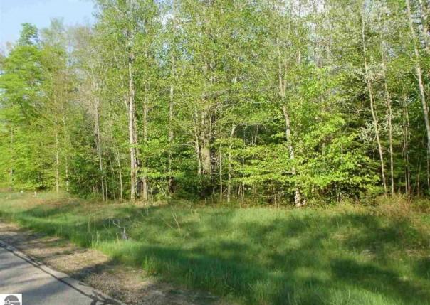 Spring Valley Drive, Cadillac, MI, 49601