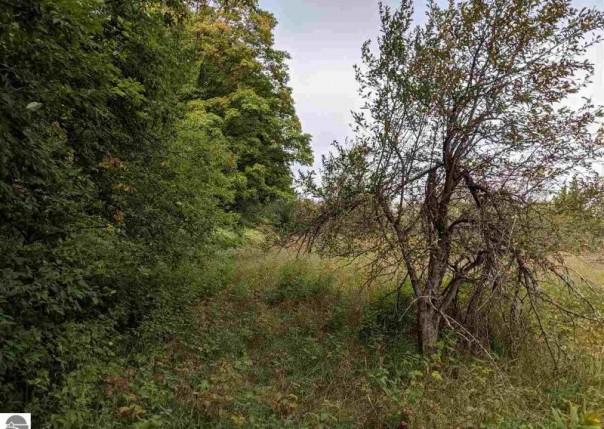 158 Acres S Plowman Road, Empire, MI, 49630