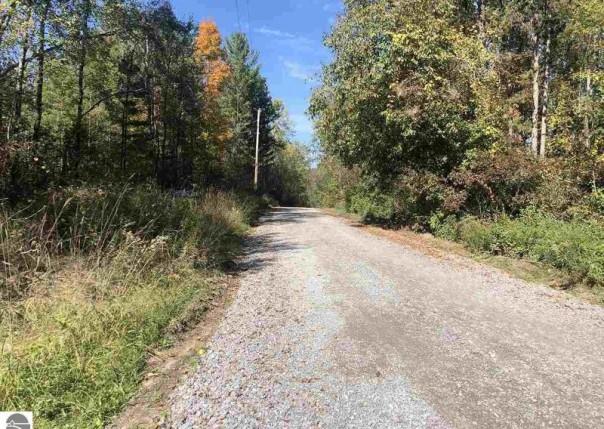 P1 Wild Cherry Lane, Hale, MI, 48739